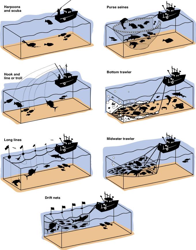 64 Fishing methods | Joe Shoulak Graphics